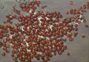Tomatoes - november blues хм 100-145 2011